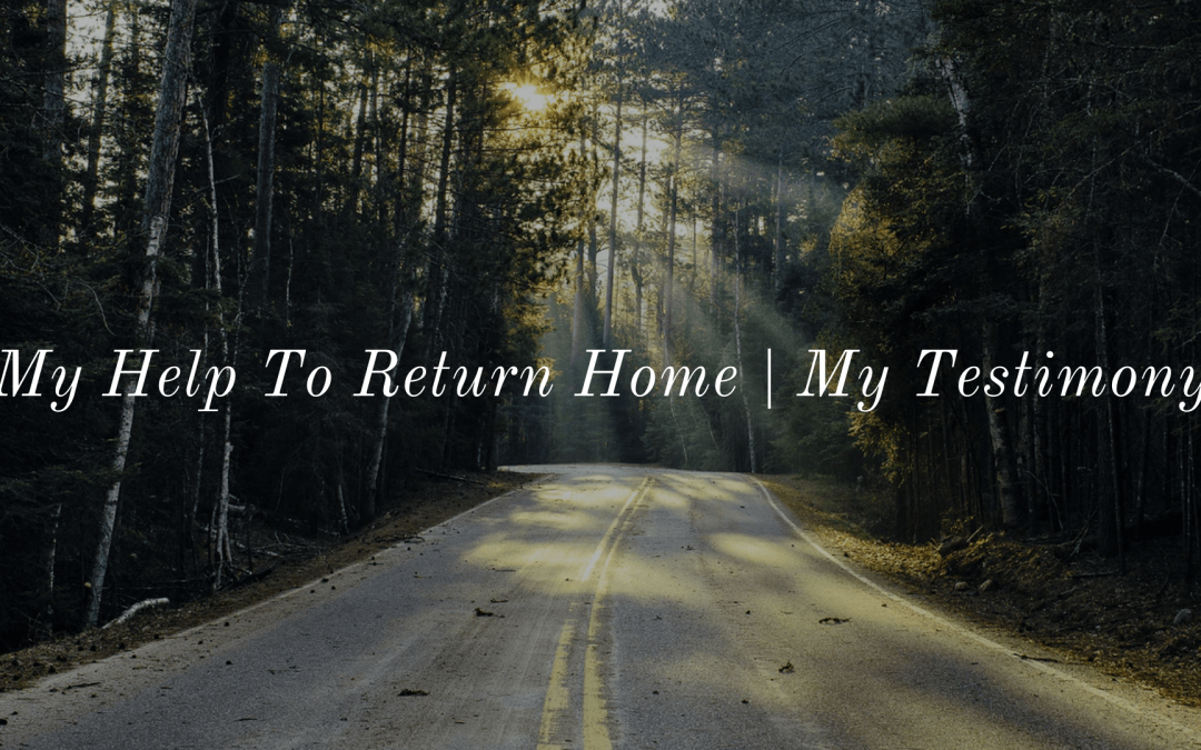 My Help To Return Home | Liew Khai Foong