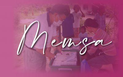 Report from MEMSA